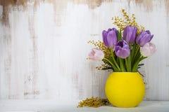郁金香和含羞草花束在一个黄色花瓶 库存照片