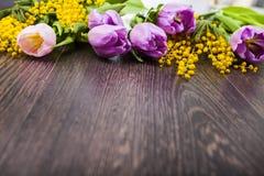 郁金香和含羞草花束  免版税库存图片