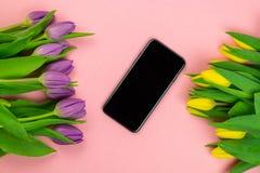 郁金香和片剂有白色大模型屏幕的在桃红色背景 贺卡为复活节或妇女的天 免版税图库摄影