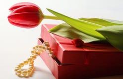 郁金香和珍珠 库存图片