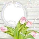 郁金香和空白白色框架 10 eps 免版税库存照片
