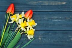 郁金香和黄水仙的花的布置 库存图片