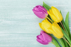 郁金香在土气桌上开花为3月8日,国际妇女天,生日或母亲节,美丽的春天卡片 免版税库存照片