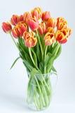 郁金香大花束在一个玻璃水罐的 库存照片