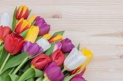 郁金香大花束在木背景的 免版税库存图片