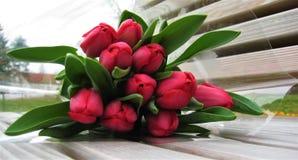 郁金香的充满活力的颜色花束的宏观照片与黑暗的桃红色颜色的瓣的 库存图片