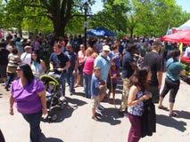 郁金香节日在阿尔巴尼,纽约州 免版税库存照片