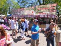 郁金香节日在阿尔巴尼,纽约州 免版税库存图片