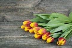 郁金香花束在木背景右边开花 下雨 妇女` s与花的天背景 免版税图库摄影