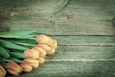 郁金香花束在木背景开花 葡萄酒颜色定调子 库存照片
