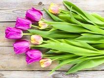 郁金香花束在木背景的 免版税库存照片