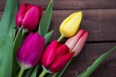 郁金香花束在黑褐色委员会的 免版税库存图片