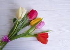 郁金香花束季节性在一张白色木背景桌上 免版税库存照片