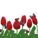 郁金香花红色蝴蝶 向量例证