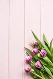 郁金香顶视图开花在桃红色木桌背景的花束 妇女假日概念 复制空间 平的位置 库存照片