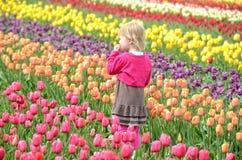 郁金香领域的小女孩 免版税库存照片