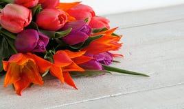 郁金香 日母亲s 花束五颜六色在篮子的郁金香在白色背景 免版税图库摄影