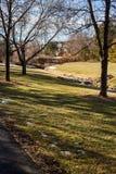 郊区公园 免版税库存图片