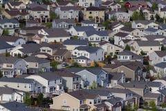 郊区居民 库存图片