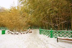 郑州people& x27; s公园 免版税图库摄影