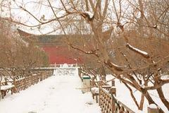 郑州people& x27; s公园 图库摄影