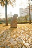 郑州people' s公园 库存图片