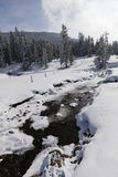 部分与一个新多雪的风景的冻小河在瑞士 免版税库存照片