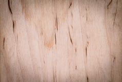 部分地发火焰的木纹理 图库摄影