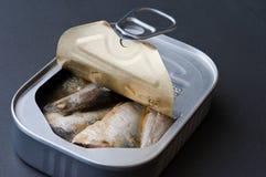 部分地被开张的沙丁鱼锡 库存照片