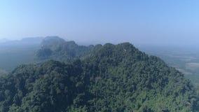 部分地被毁坏的雨林鸟瞰图  股票视频