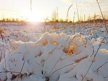 部分熔化雪和晚上太阳 库存图片