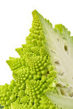 部分绿色新鲜的罗马式花椰菜 免版税库存照片