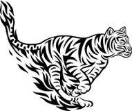 部族公平地的老虎 免版税库存图片