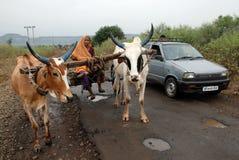 部族印度的人 免版税库存照片