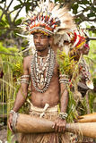 年轻部族战士在农村热带海岛村庄 库存图片