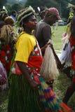 部族瓦努阿图村庄妇女 免版税库存照片