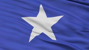 部落斐济旗子特写镜头无缝的圈 股票录像