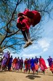 部落马塞人的人显示礼节跃迁 免版税库存照片