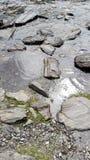 都伯林海滩专辑石头 免版税库存照片