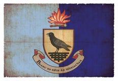 都伯林爱尔兰难看的东西旗子  图库摄影