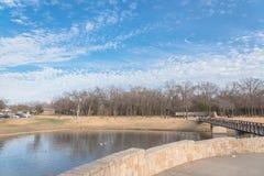 都市公园光秃的树,高积云,喷泉湖在得克萨斯, 免版税库存照片