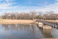 都市公园光秃的树,高积云,喷泉湖在得克萨斯, 图库摄影