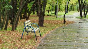 都市公园看法在秋天雨天 影视素材