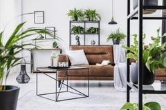 都市密林在现代客厅内部与大舒适的皮革长沙发 免版税库存图片