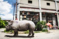 都市密林犀牛和火鸟 库存图片