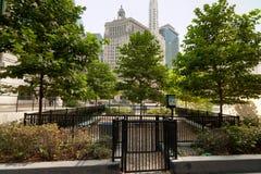 都市狗的公园 库存照片