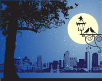 都市田园诗晚上的场面 皇族释放例证