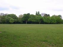 都市的公园 免版税图库摄影