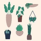 都市的密林 与时髦家庭植物的传染媒介例证 向量例证