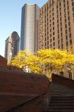 都市的广场 库存图片